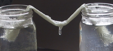 stalactite growing on paper towel